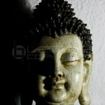 2-tone-medium-thai-buddha-2
