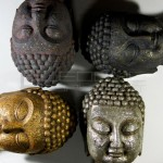 meet-the-buddhas