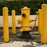 yellow (10)