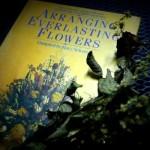 arranging-everlasting-flowers (5)